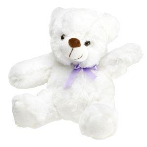 Light Up Teddy